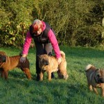 Dixie, Inchi and Tippi doing a runner - Oct 2012