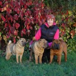 Dixie, Inchi, Tippi and me - Oct 2012