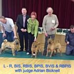Mono Winning BPIS